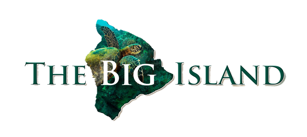 bigisland_logo